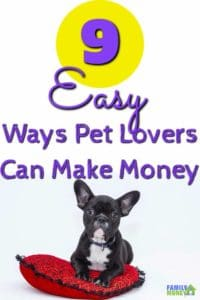 If you love pets you can turn that love into some extra money. Here are some easy ways to make money with your (or other people's) pets | Making Money | Pets |Side Hustle | Extra jobs |