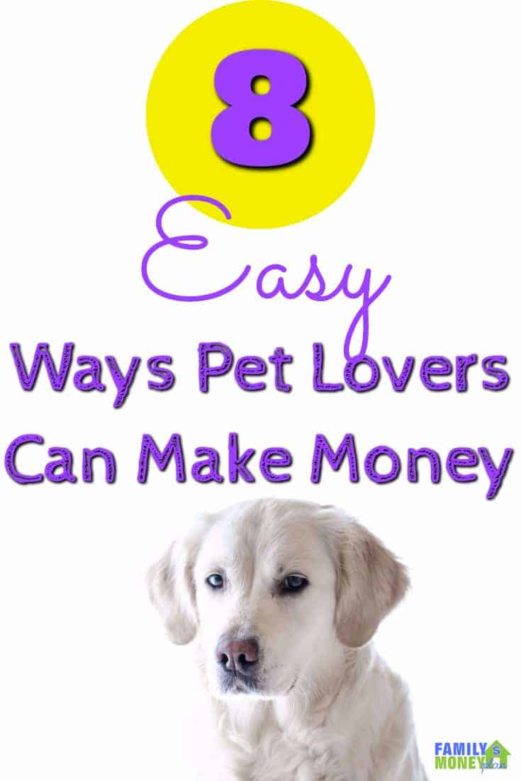 ways to make money working with dogs