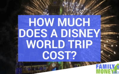 How Much Does A Disney World Trip Cost?