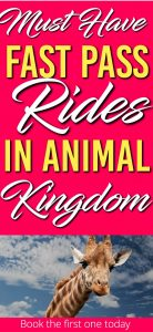 Here is a list of the Must Have Fast Pass Rides in Disney World's Animal Kingdom. The first one you need to book as far in advance as you can. |Animal Kingdom | Disney World | Rides | Fast Pass |