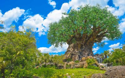 Animal Kingdom Rides: The Complete Guide to Animal Kingdom Rides and Attractions