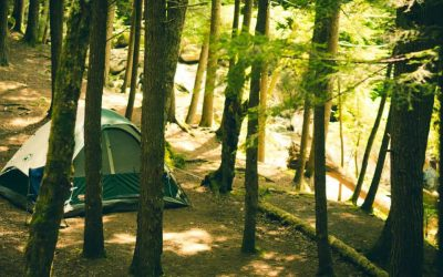 Ultimate Family Camping Checklist – Free Printable