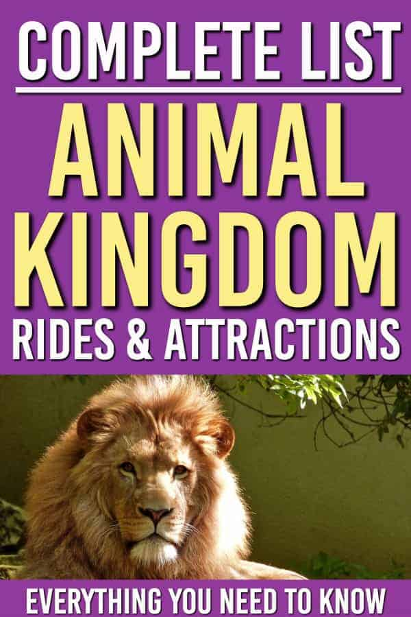 The Complete Guide to Disney World's Animal Kingdom Rides and Attractions. Everything YOU need to know about  the rides you can go on in Animal Kingdom and which ones are worth the wait!